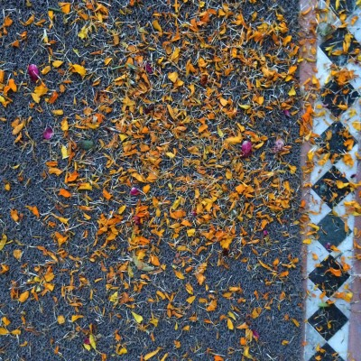 Marigolds and marble - photo - Karen Anderson